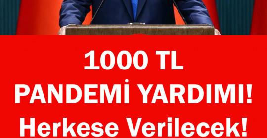 1000 TL PANDEMİ YARDIMI